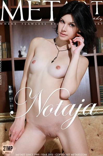 MetArt_presents_Photos_Gallery_Notaja,_Model_Elizabet,_Artist_Matiss.png