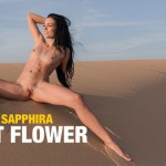 FemJoy – Sapphira – Desert Flower Video by Tom Mullen