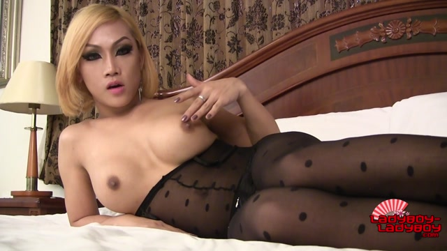 Ladyboy-ladyboy_presents_Love_Cums_On_Her_Stockings__-_16.09.2016.mp4.00004.jpg