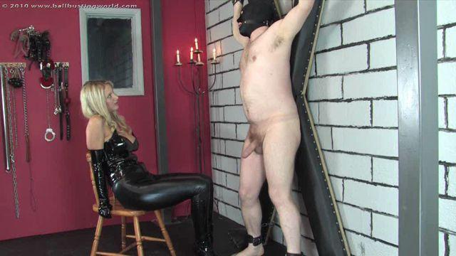 Watch Online Porn – Ballbusting World PPV – Nikki Whiplash – Introducing The Squealer (WMV, SD, 1024×576)