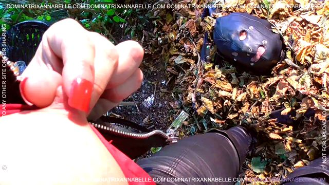 DominatrixAnnabelle_presents_Annabelle_Tamsin_in_Autumnal_Sleepover_.mp4.00014.jpg