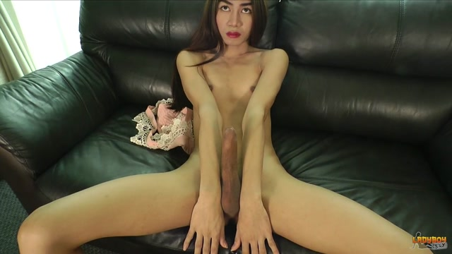 Ladyboy.xxx_presents_Frame_in_A_Well_Hung_Frame__-_21.10.2016.mp4.00015.jpg