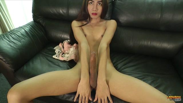 Big tittie tranny
