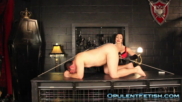 Watch Online Porn – OpulentFetish – Cheyenne – Stretched By Ass Hook and Humbler (MP4, HD, 1280×720)