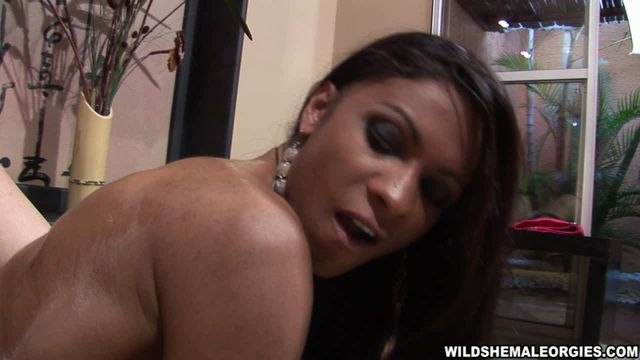 WildShemaleOrgies_presents_Andreia_de_Oliveira__Sabrina_di_Paula__Sabrina_Sherman__Yris_Schimit_in_Oil_Massage.wmv.00002.jpg