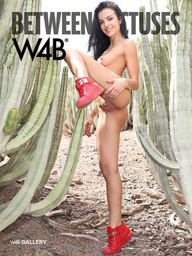 1_Watch4Beauty_presents_Sapphira_in_Between_Cactuses_-_16.11.2016.jpg