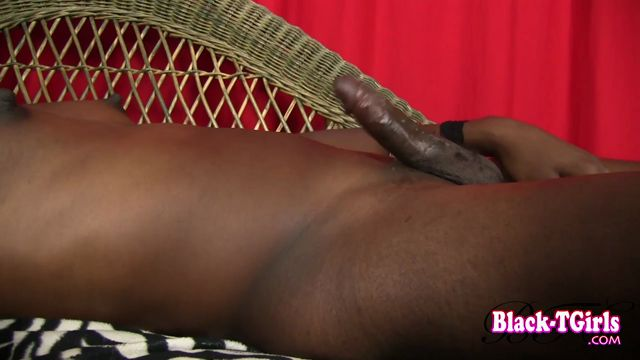 Black-tgirls_presents_Traci_Handler_in_Traci_Handler_Strokes_It__-_11.11.2016.mp4.00013.jpg