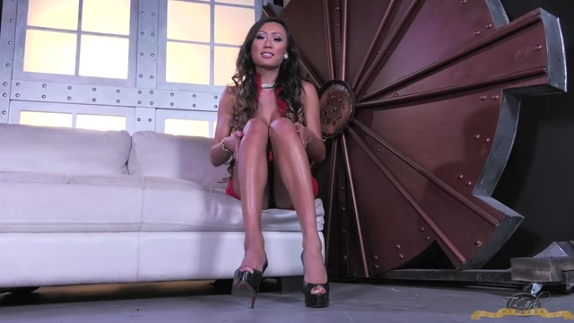 Watch Online Porn – Tgirl-network presents Venus Lux Jacks Her Cock Off – 30.11.2016 (MP4, HD, 1280×720)