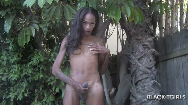 Black-tgirls_presents_Dazia_Kockdazian_in_Pretty_Dazia_Kockdazian_Pools..._-_02.12.2016.mp4.00012.jpg