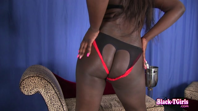 Black-tgirls_presents_Sexy_Curvy_Starr_Is_Bootylicious__-_14.12.2016.mp4.00001.jpg