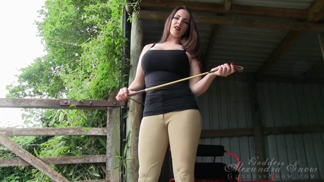 Watch Online Porn – Goddess Alexandra Snow in Trained for the Cart (TS, HD, 1280×720)