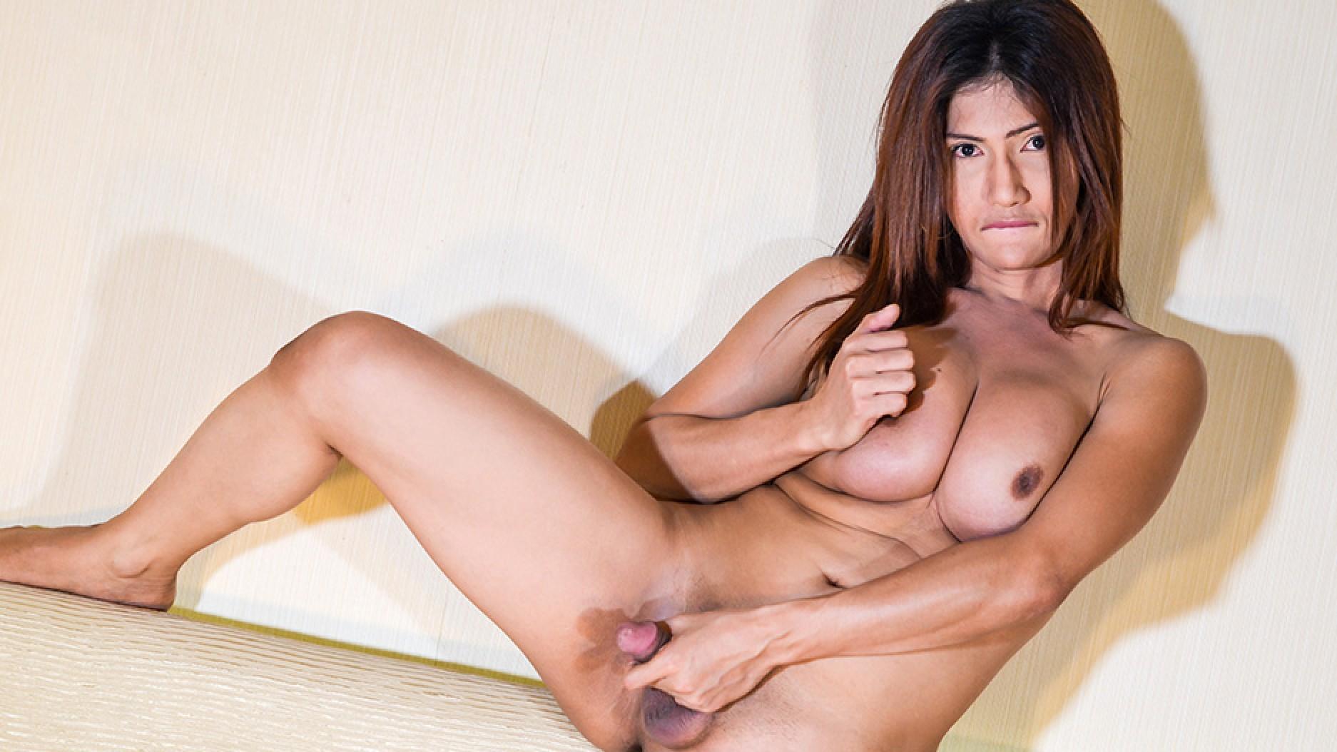 1_Ladyboy-ladyboy_presents_Pauline_Diaz_Jacks_Her_Cock__-_05.01.2017.jpg