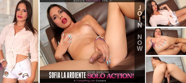 1_Trans500_presents_Sofia_La_Ardiente_in_Some_Sizzling_Solo_Action_-_17.01.2017.jpg