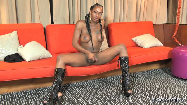 Black-tgirls_presents_Bootylicious___Hung_Toni_Michaels__-_20.01.2017.mp4.00012.jpg