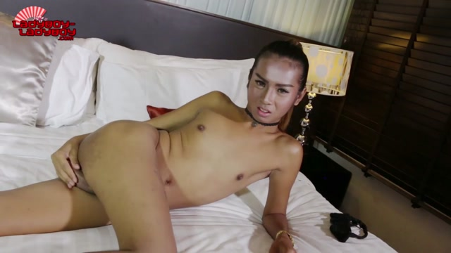 Watch Online Porn – Ladyboy-ladyboy Tgirl Beauty Rola Gets Nude – 23.01.2017 (MP4, HD, 1280×720)