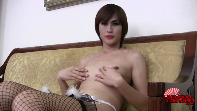 Watch Online Porn – Ladyboy-ladyboy presents Luscious Pau Hot Curves! – 24.02.2017 (MP4, HD, 1280×720)