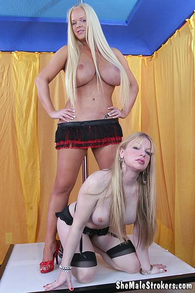 1_Shemalestrokers_presents_Vicki___Holly_in_Two_Hot_Trans_Girls_Are_Better_Than_One_And_Twice_The_Cum__-_27.02.2017.jpg