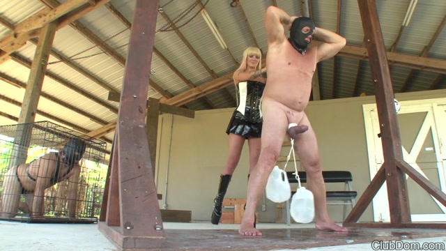 ClubDom_presents_Alexia_Jordan_in_Work_out_those_Nuts__-_14.03.2017.mp4.00011.jpg