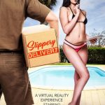NaughtyAmerica – Virtual Reality Porn presents Porn stars: Ariana Marie, Charles Dera in Slippery Delivery – 14.04.2017