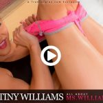 Trans500 presents Destiny Williams in All About Ms.Williams – 04.04.2017