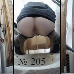 Pisswc presents Voyeur Hide Cam in Women WC – 205