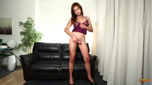 Watch Online Porn – Ladyboy.xxx presents Horny Gina In Purple Lingerie! – 12.05.2017 (MP4, HD, 1280×720)