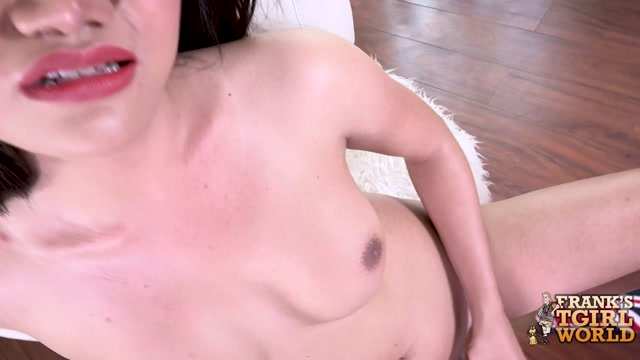 Watch Online Porn – Franks-tgirlworld presents Nice And Naughty Judy – 23.08.2017 (MP4, HD, 1280×720)