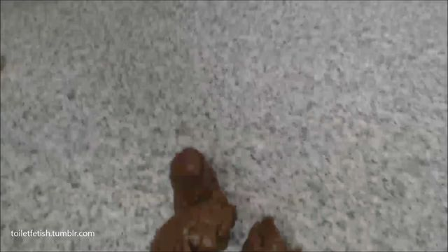 ScatShop_presents_Kaidence_King_in_Doggystyle_Poop.mp4.00013.jpg