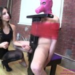 Clips4Sale – Bratprincess presents Alexa in Alexa Punches Pigs Balls and Ruins its Orgasm