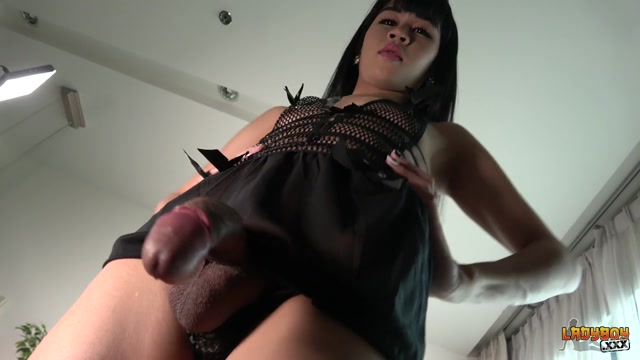 Watch Online Porn – Ladyboy.xxx presents Welcome Back Pretty Mindeer! – 05.10.2017 (MP4, HD, 1280×720)