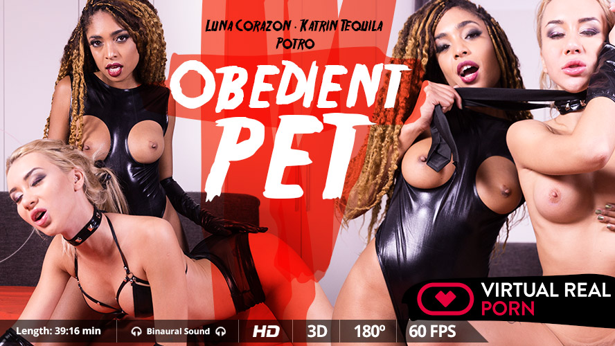 1_Virtualrealporn_presents_Anna_Thorne__Luna_Corazon__Potro_de_Bilbao_in_Obedient_Pet_-_16.11.2017.jpg