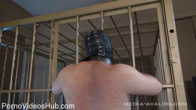 Watch Online Porn – Cybill Troy in Whipping (MP4, HD, 1280×720)