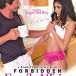 Forbidden Family Affairs 2 (Full Movie)