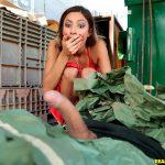 RealityKings – SneakySex presents Jade Jantzen in Dumpster Diving – 16.12.2017