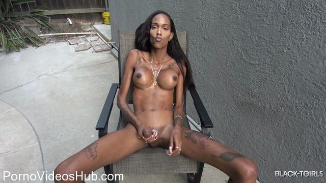 Watch Online Porn – Black-tgirls presents Dazia Kockdazian Is Back! – 05.01.2018 (MP4, HD, 1280×720)