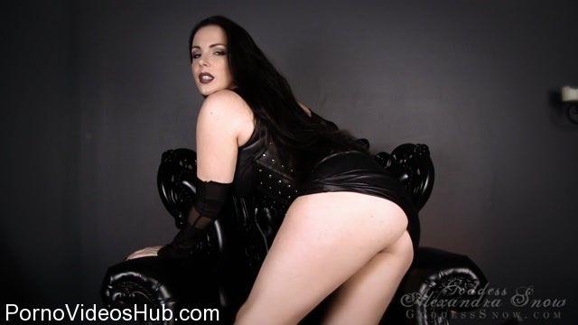 Watch Online Porn – Goddess Alexandra Snow in Intelligent Obedience (MP4, HD, 1280×720)
