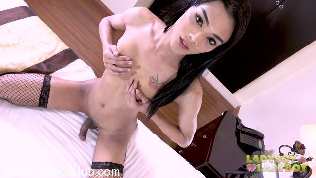 Ladyboy-ladyboy_presents_Gorgeous_Aris_Cums_For_You__-_14.02.2018.mp4.00013.jpg