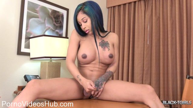 Watch Free Porno Online – Black-tgirls presents Megan Snow Cums! – 09.04.2018 (MP4, HD, 1280×720)