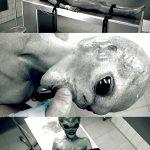HorrorPorn presents Roswell UFO