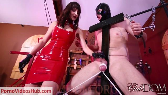 ClubDom_presents_Lexi_Luna_in_Milked_For_Control_-_Forced_Orgasm.mp4.00006.jpg