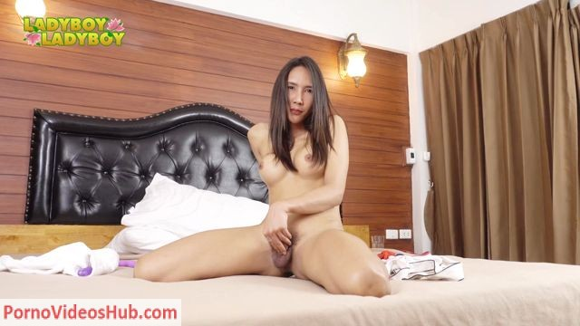 Watch Online Porn – Ladyboy-ladyboy presents Horny Sexpot Atom! – 20.07.2018 (MP4, HD, 1280×720)