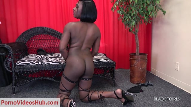 Black-tgirls_presents_A_Rose_For_You__-_21.08.2018.mp4.00007.jpg