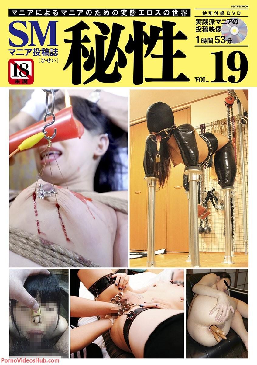 1_Sanwa_Publishing_Hisei_Vol.19_Sanwa_Mook.jpg