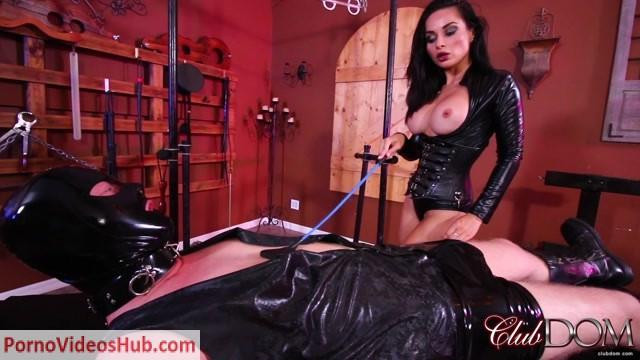 Watch Online Porn – ClubDom – Mistress Crystal – Milks the New slave (MP4, FullHD, 1920×1080)