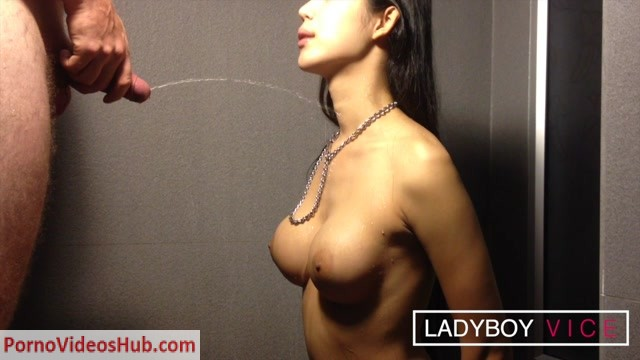 Watch Online Porn – LadyboyVice presents Pamela On Me – 12.12.2018 (MP4, HD, 1280×720)