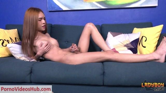 Watch Online Porn – Ladyboys.xxx presents Extremely Hot Kitty Cums Hard! – 07.01.2019 (MP4, HD, 1280×720)
