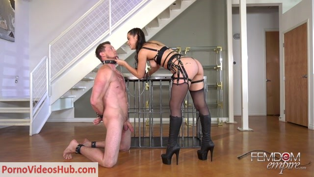 Watch Online Porn – Vicious Femdom Empire – Ball Blaster – Alina Lopez – Ballbusting (MP4, FullHD, 1920×1080)