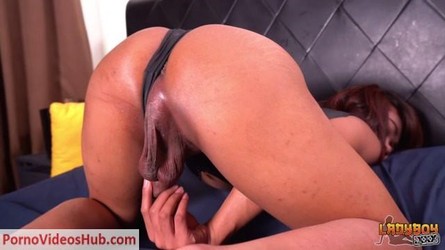 Watch Online Porn – Ladyboys.xxx presents Incredibly Hot Nat! – 20.02.2019 (MP4, HD, 1280×720)