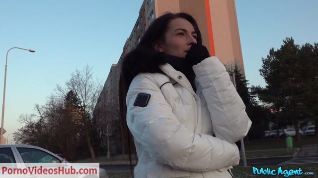 FakeHub_-_PublicAgent_presents_Lexi_Dona_in_Tight_wet_pussy_drains_agents_balls_-_12.03.2019.mp4.00004.jpg