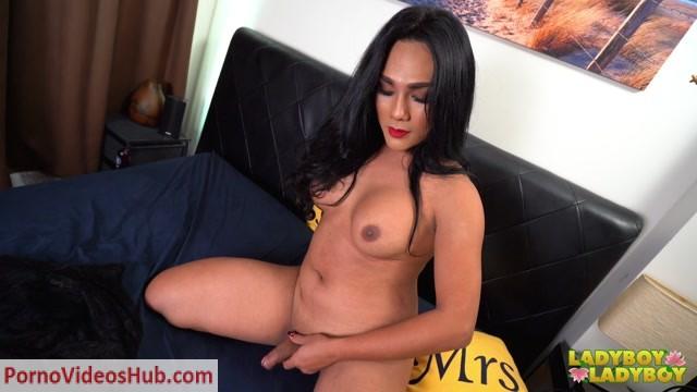 Watch Online Porn – Ladyboy-Ladyboy presents Curvylicious Sara Arrives! – 05.03.2019 (MP4, FullHD, 1920×1080)